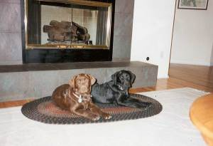 Dogs at the Fireplace